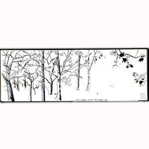 hugo_06_2015_trees_r23-psi